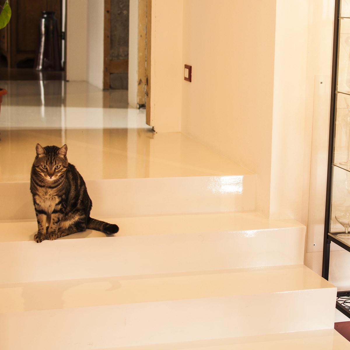 Pavimento in resina in bagno moderno la resina di talon massimo - Pavimento bagno moderno ...